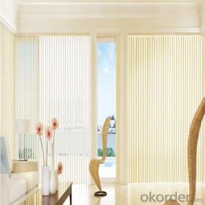 Blackout Sun Shade Curtain Plastic Chain Pull double-layer roller blinds exterior blinds for windows