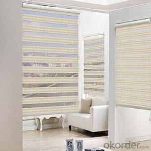 Smart home automatic curtains track electric blinds
