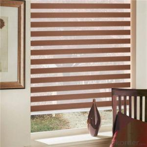 String Curtains Blinds Fly Screen Patio Door Divider Door Window Fringe Curtains
