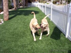 Artficical grass/High  quality  raw  material   for  pets