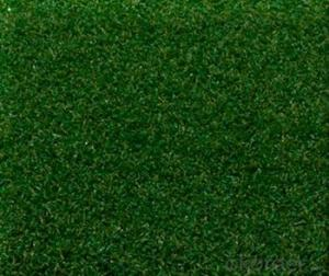 Artificial lawn or turf of golf course