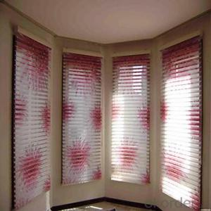 Vertical Blinds Finished Motor Electric Shangri-la Roller Blind