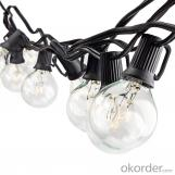 25FT G40 Globe String Light with 25 Clear Bulbs,Patio Outdoor Light String