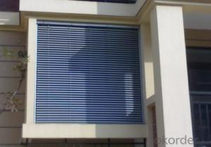 Blackout popular zebra roller blinds Canada and skylight blinds manufacturer in China