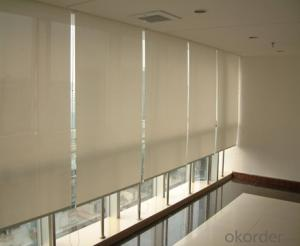 roller blind with plastic fabrics customized for window