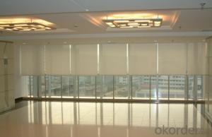 Electric Roller Blind Curtains for Bedroom/Living Room