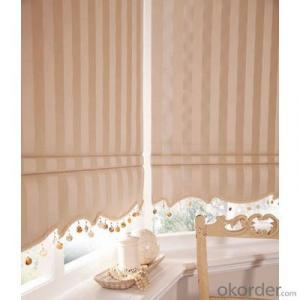 waterproof remote controlled zebra spring loaded roller blinds