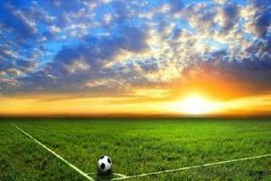 Artificial grass for football land