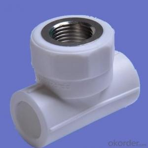 PPR Fittings Female Tee and Equal Tee from China Professional