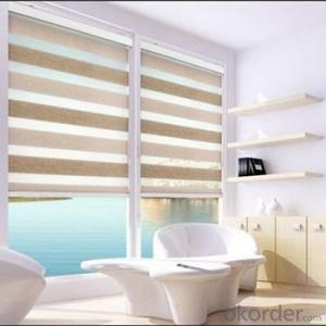 Zebra Motorized Roller Blinds for Living Room