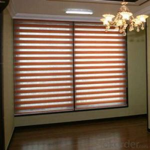 Zebra Blinds with Electric Device for Office Home Decor