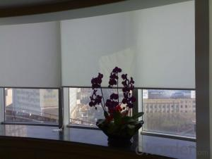 100% Blackout Roller Blinds Fabric Waterproof Roller Curtain