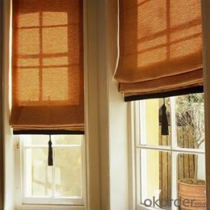 Roller Curtain with Waterproof for House Window