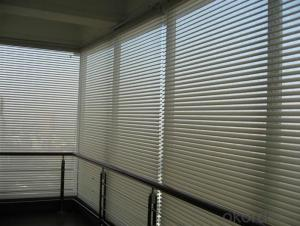 Zebra Blinds Electric for Window with Fairly Reasonable Price