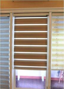 Zebra Blind Curtains for Window Decoration with Fairly Reasonable Price