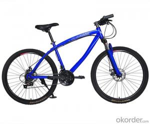 Mountain Bike With 26 Inch Mechanical Disc Brake Variable Speed High Carbon Steel Frame MTB Bicycle