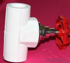 *New PPR Fitting Male & Female Threaded Coupling Used in Industrial Fields and Agriculture