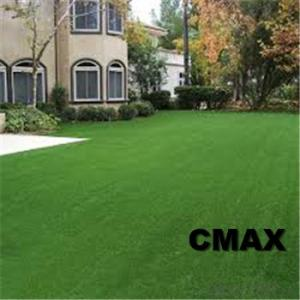 Perfect Artificial Turf for Pet Runs/Pet Training Field