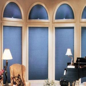 zebra roller window blind for home decoration