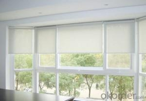 Clear Plastic Decorative Roller Blind Kits