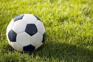 Artificial turf used on mini soccer fields