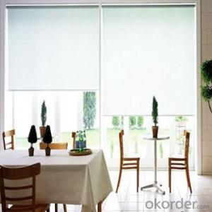 Roller Blinds With Embroidered Sheer Voile Curtain Fabric