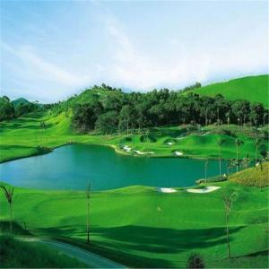 Mini Golf Artificial Grass Of  Sport