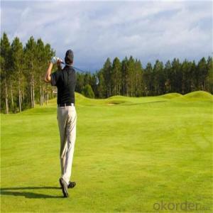 Green  Artificial  Grass  Golf  Grass/Skin Soft