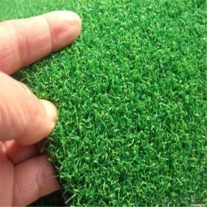 Golf Grass/ Artificial Grass Of Golf  Best Grass