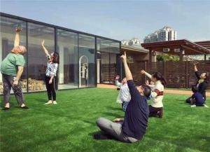 Artificial Grass for Tennis and Basketball Court Artificial Grass