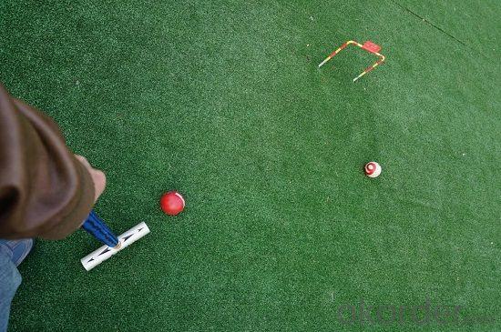 Golf Grasssport Grass High Quality Grass