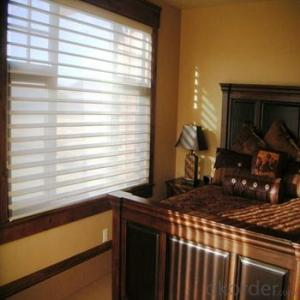 3D Zebra Roller Blinds Window Blinds Fabric