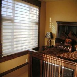 Zebra Roller Window Blackout Blinds for Garage