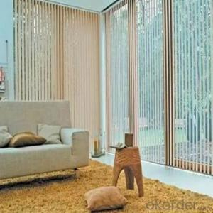 Zebra Blinds for Windows and Living Room Décor