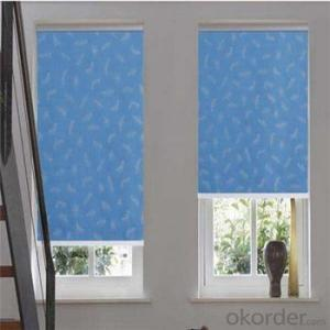 plastic  waterproof clear plastic motorized roller blinds
