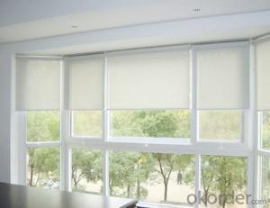 Spring Loaded Side Window Roller Shades Blinds