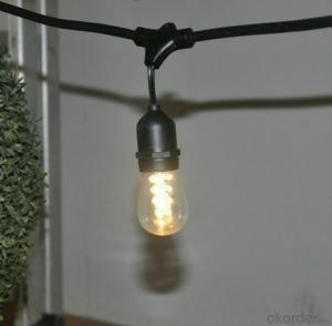 Incandescent Led Light Bulb String with 25 Clear Bulb for  Hotel Stage HomeGarden Decoration