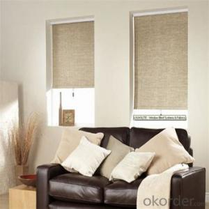 Roller Blind Heat Resistant Office Door Blind