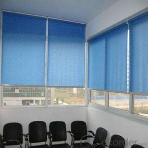 Zebra Blind Blackout Automatic for Garage Window