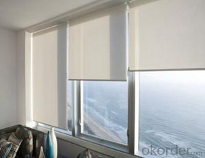 Heat Resistant Lowes Outdoor Roller Blinds