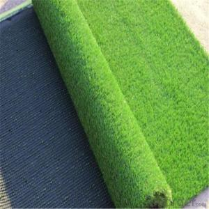 Pet/animal used for easy cleaning of artificial turf.
