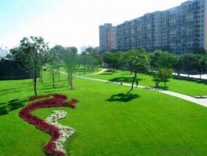 Low price mini football soccer field artificial grass carpet