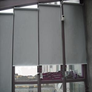 Exterior Doors Internal Double Roller Blinds