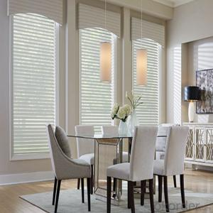 Decorative Vertical Elegant Roller Blinds