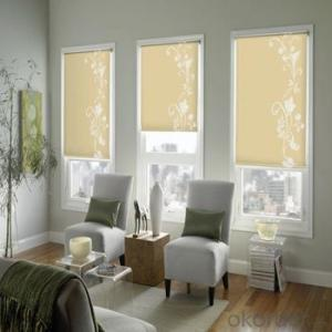 spring loaded zipper roller blinds with magic screens