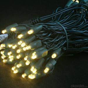 5MM Wide Angle Led Light String for Outdoor Indoor Wedding Christmas Decoration