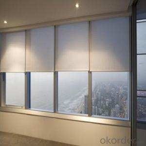 Roller Blinds Motorized Waterproof Zebra Blind for Office and Home