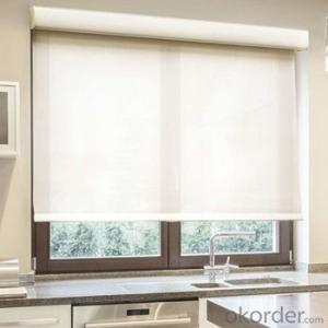 Roller Blinds Motorized Outdoor Waterproof Electric Outdoor Blinds for Office