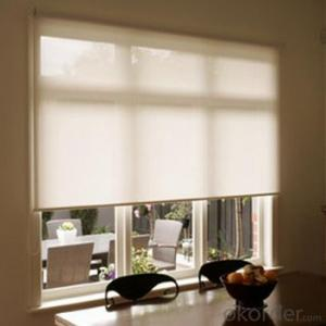 Roller Blinds Motorized Waterproof Zebra Blinds for Office and Home