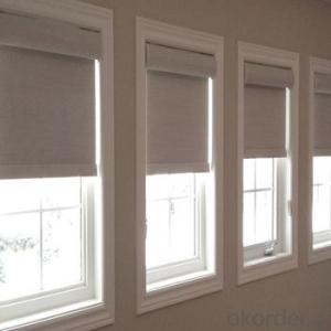 Roller Blinds Motorized Waterproof Windows Blind for Office and Home